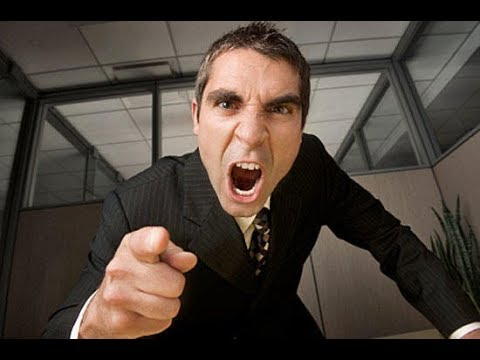 Як розмоляти з начальником щоб він не кричав Що робити коли начальник кричить