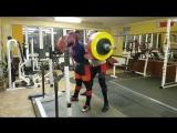 Алексей Никулин,  приседания 325 кг на 2 раза