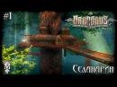 Draconus: Cult of the Wyrm — Селанарин ► Прохождение 1