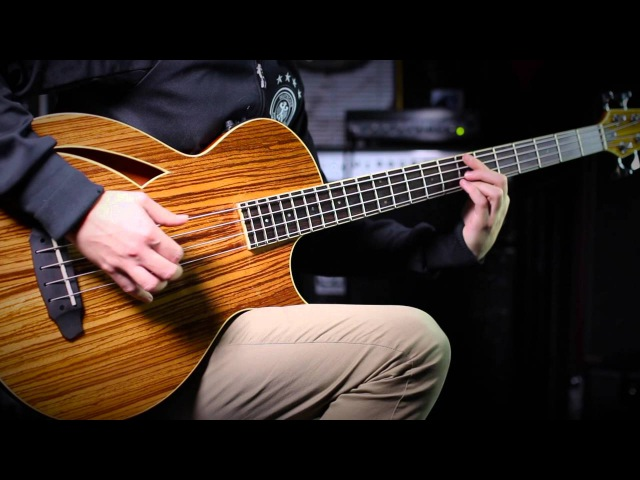 ESP LTD Thinline Bass TL-4Z Demo