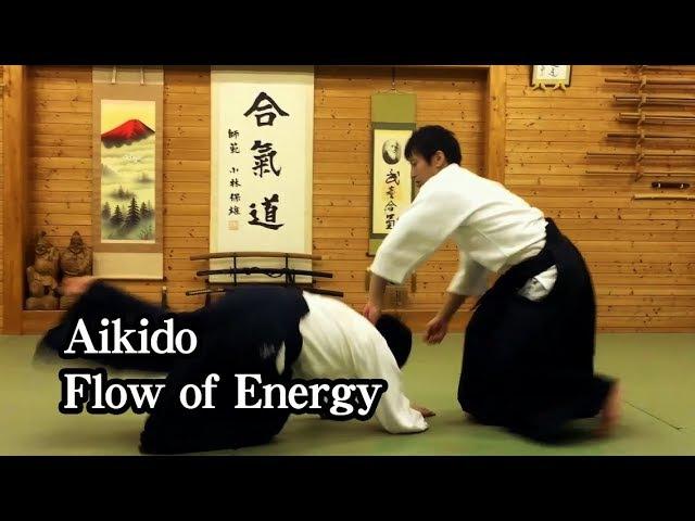 合気道の自由技・気の流れ Aikido - Flow of energy