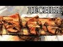 Дикая кухня - ЖАРЕНАЯ РЫБА НА ДОСКЕ | Деревянные гвозди - Planked Fish lbrfz re[yz - ;fhtyfz hs,f yf ljcrt | lthtdzyyst udjplb -