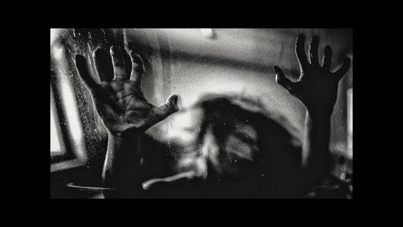 Behind The Shadow Drops - H a r m o n I c [Full Album]