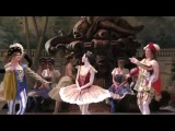 080318 Viktoria Tereshkina, Rose Adagio in Vikharev's the Sleeping Beauty