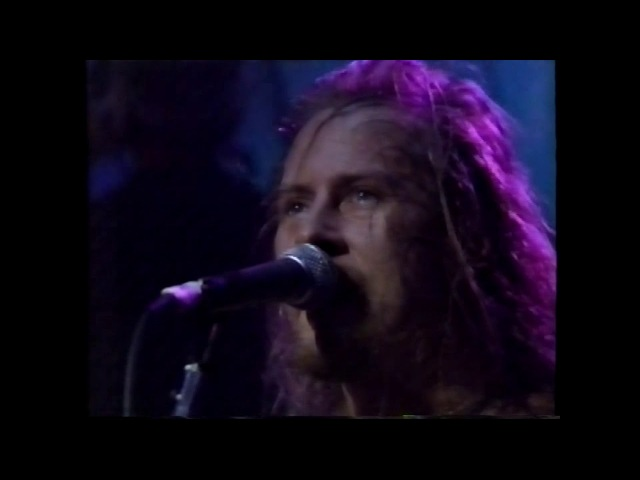 Alice In Chains Pro TV Archives 1991 1996 HD1080 60F