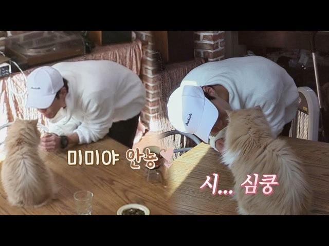 박보검에 '초 밀착 아이컨택' 당한 미미 (시.. 심쿵이다냥♥) 효리네 민박2 6회