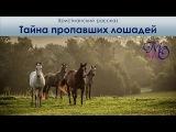 Тайна пропавших лошадей - Христианский рассказ
