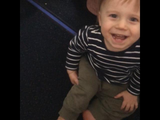 """Алексей Воробьев-🅐🅛🅔🅧 🅢🅟🅐🅡🅡🅞🅦. on Instagram: """"Счастливый ребёнок и суперзвезда рейса «Ванкувер-Лос Анджелес» ЭлвисМэлвис 🐶✈️👼🏼"""""""