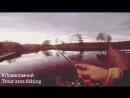 Ловля прудовой форели 21 10 2017