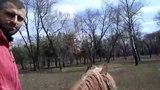 Райми на коне