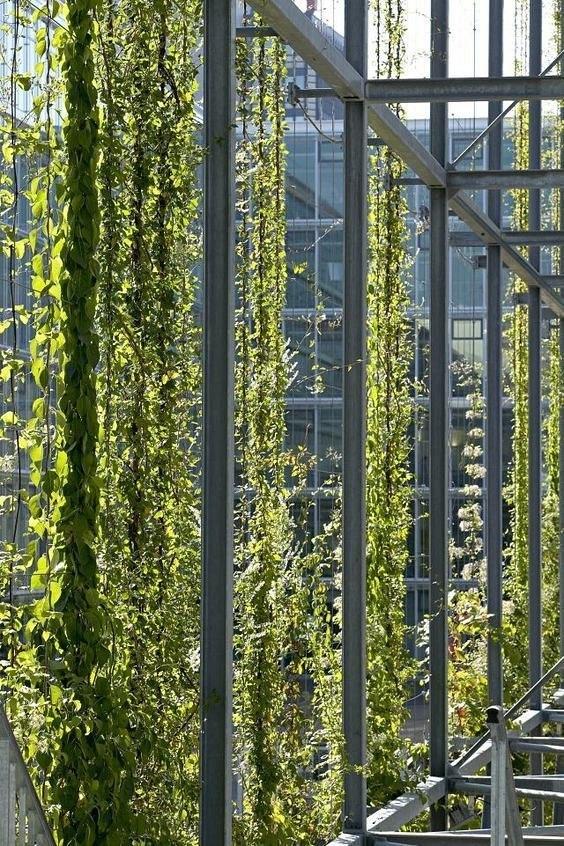 MFO Park in Zurich