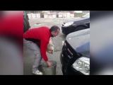 Житель Кубани моет котом свой автомобиль