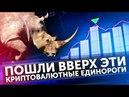 Топовые криптовалюты STELLAR IOTA MONERO Новости про BITCOIN Майнинг и Coinbase
