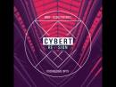CybeRT ReVIsion