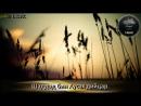 11 - гIа. Шаддад бин Аусах дийцар. (Дела реза хуьлда цунна). АБУ-ХАЛИД.mp4