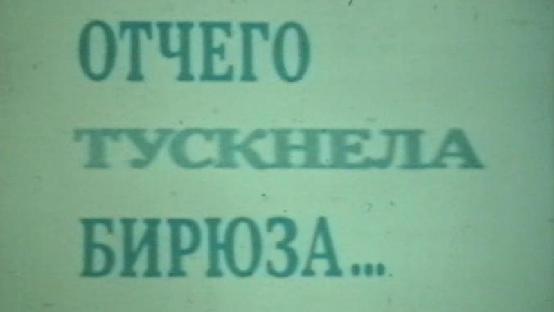 Отчего тускнела бирюза / 1985 / КиевНаучФильм