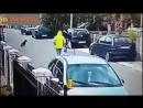Бездомный пёс спас девушку от грабителя