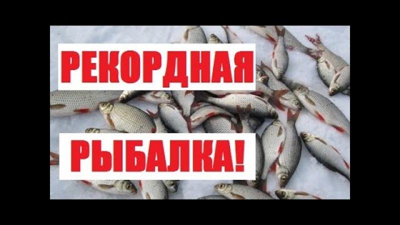 Рекордная рыбалка!Жизнь в деревне.