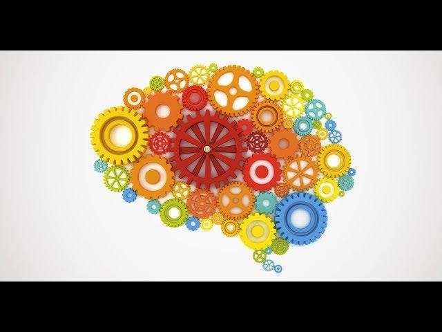 Вебинар Ольги Бутаковой «Как мозг управляет нами»