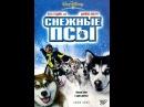 Снежные псы КиноПоиск