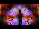 Chris Zippel - Surface (remix)