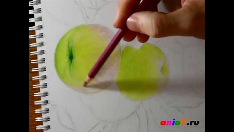 Рисуем зеленые яблоки цветными карандашами. Часть 4