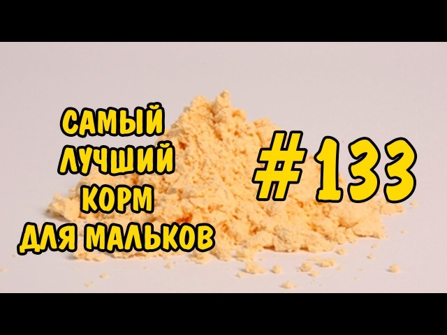 133 САМЫЙ ЛУЧШИЙ КОРМ ДЛЯ МАЛЬКОВ THE BEST FOOD FOR FRY