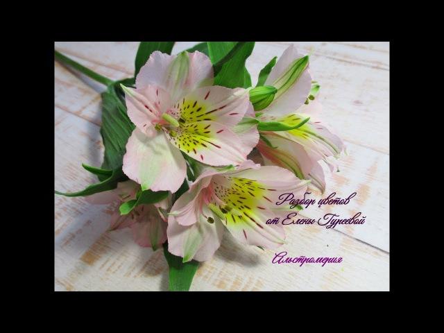 Альстромерия. Разбор цветка.Видеоразбор цветов от Елены Гуреевой.