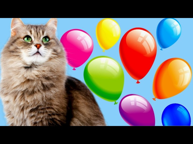 УЧИМ ЦВЕТА Кошечка Лопает Цветные Воздушные ШАРИКИ Развивающее видео для Детей