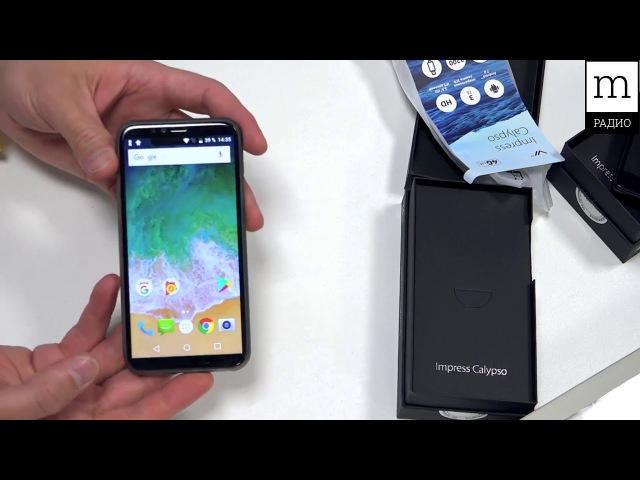 IPhone X для бедных. Краткий обзор Vertex Impress Calypso