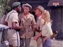 Daktari Rhodesian Ridgeback