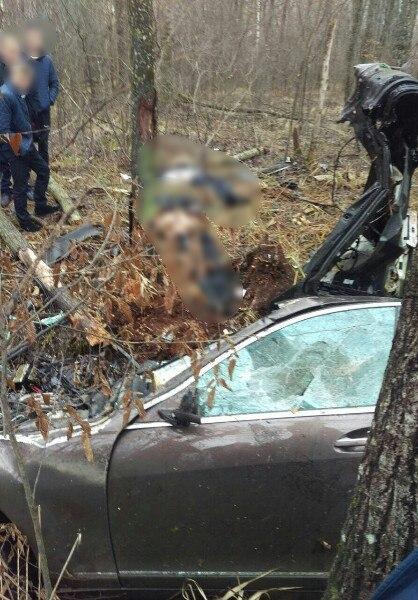 Молодые ольшанцы попали в смертельное ДТП в Гомельской области. За рулем находился бесправник