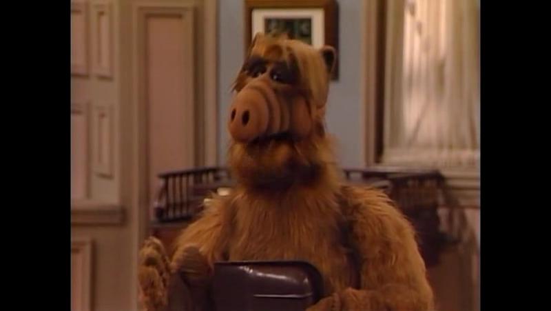 Alf Quote Season 2 Episode 1 _Альф и картина