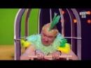 Этот номер про попугая порвал зал_ Вечерний Квартал