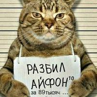 Анкета Денис н