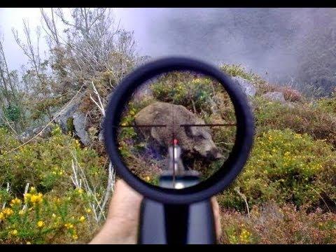Top 10 Caçada De Javali chasse sanglier domuz avı caccia al cinghiale wild boar hunting 2018