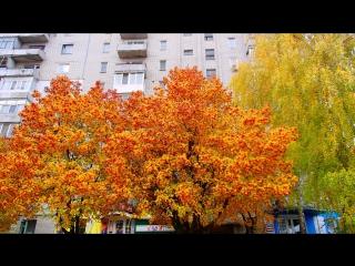 Ковшаровка осенью