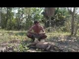 Мужик докапываетя до животных в джунглях