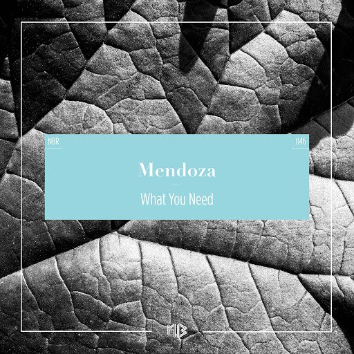 Mendoza альбом What You Need