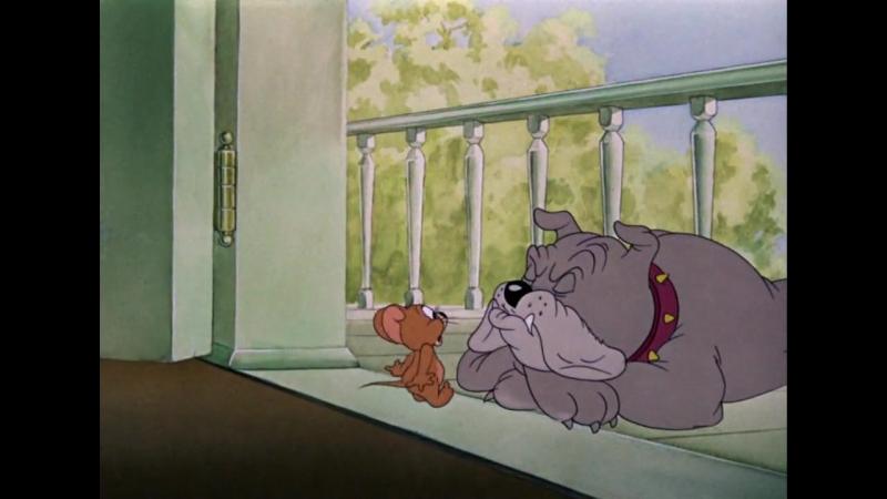 5 Том и Джерри - Пес - нам не товарищ Tom and Jerry - Dog Trouble (1942).720
