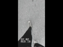 Camcorder 2017-11-06 23-53-
