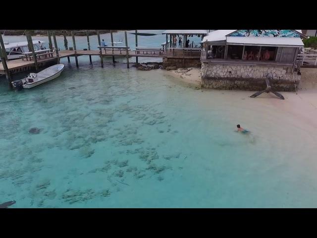 Мальчик купаясь на Багамах не заметил как к нему подплыли четыре акулы .