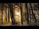 Silent Night ( Stille Nacht, Sung By The Vienna Boys Choir)