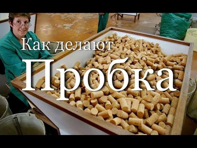Как делают пробку | How is making cork