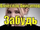 Вячеслав Анисимов песня Забудь красивые лучшие все песни про любовь клипы о лю ...