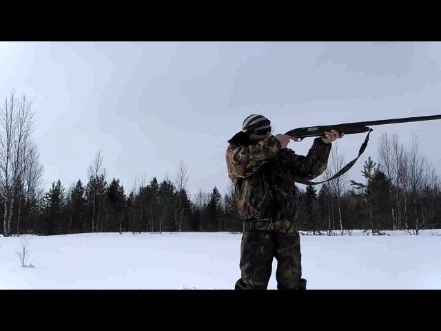 Стрельба пулей импульс-5 из ружья МЦ 21-12