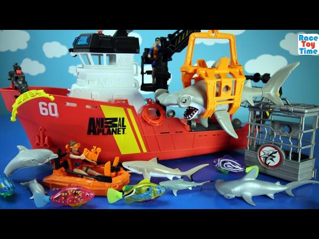 Animal Planet Deep Sea Animals Shark Toys Playset For Kids - Learn Animal Names Video