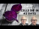 Cancer Cells Die In 42 Days Renowned Austrian's Juice Cured Over 45 000 People From Cancer