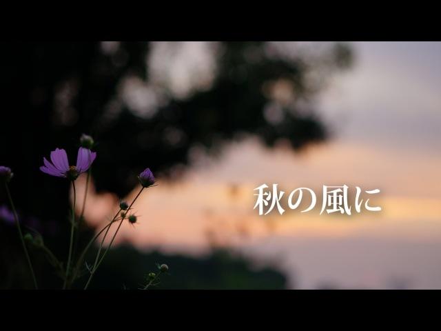 Akahori【WIL】- 秋の風に (In the Autumn Wind)
