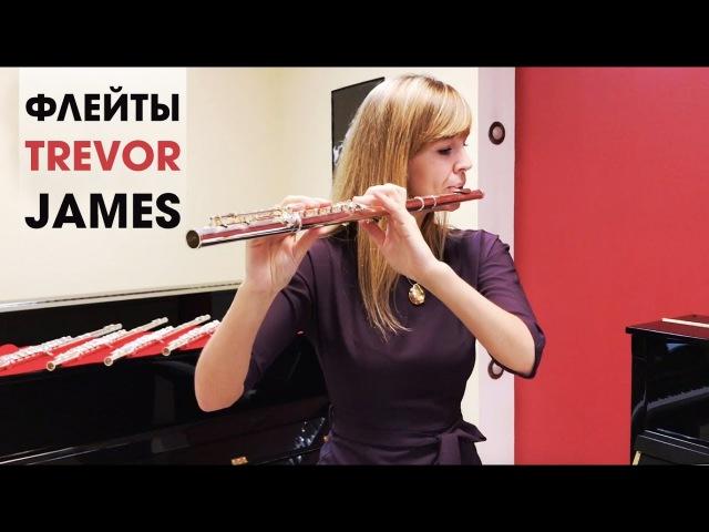 Флейты Trevor James - обзор флейт 10x, Performer и Recital